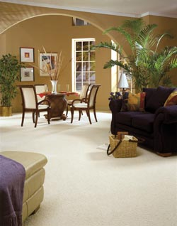 Carpet Flooring in Carroll, IA.